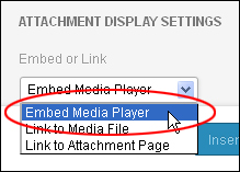 WordPress Update 3.6 - Embed Media Player