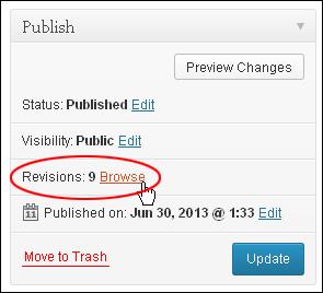 WordPress Update 3.6 - Publish Box